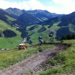 Linn sykler mellom kuer i Hinterglemm